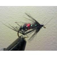 Bristol Hopper bibio